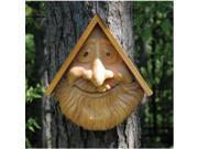 Red Carpet Studios 41042 Birdie In Woods Old Man Birdhouse