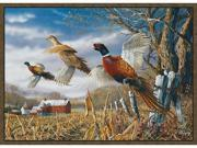 Custom Printed Rugs PHEASANTS Pheasants Wildlife Rug