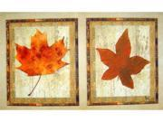 Custom Printed Rugs DM  31 Maple Leaves Door Mat