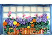 Custom Printed Rugs DM  47 Window Box Door Mat