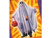 Costumes For All Occasions FW9705LG Friendly Ghost Child Large