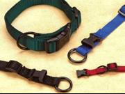 Hamilton Pet Company Adjustable Dog Collar Black .38 X 7 12 FAE 7 12 BK