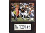 C & I Collectables 1215TEBOWJETSH NFL Tim Tebow New York Jets Player Plaque 9SIA00Y0Z78420