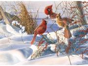 Outset Media Games Birds of a Feather 1000 piece Puzzle