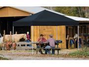 ShelterLogic 22541 12x12 ST Pop up Canopy Black Cover Black Roller Bag