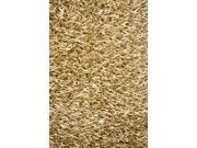 Noble House SARA220246 Sara Gold - Rug 4x6