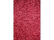 Noble House SARA221758 Sara Hot Pink - Rug 5x8
