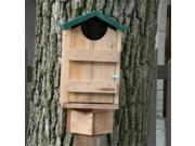 Looker HS08 10 W x 9 L x 15 H Screech Owl Bird House