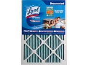 Lysol Air Filter Triple Protection 15 x 20 x 1 in. -  Pack of 2 9SIA00Y42X2907