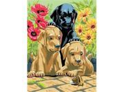 Royal & Langnickel PJS30 8 .75 x 11 .37 Junior Small Set Labrador Pups