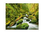 Image of Brewster Home Fashions DM909 Green Canyon Cascades Wall Mural - 63 in.