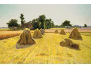 "FOV Editions Giclee Canvas Print  Unframed 16"" X 24 ""  Modern Art Grain Fields Landscape By Edwin Evans"