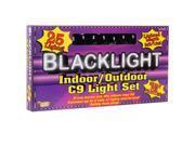 24' Blacklight String Lights