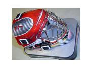 Detroit Red Wings Mini Goalie Mask 9SIAD245DT1250