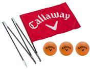 NEW Callaway Golf Back Yard Practice Flag Pole with 3 Soft-Flite Practice Balls
