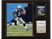 C and I Collectables 1215DEWILL NFL DeAngelo Williams Carolina Panthers Player P