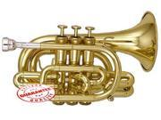 HAWK LACQUER BRASS POCKET TRUMPET WD-TP317