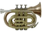 Roy Benson RBPT-101G Bb Pocket Trumpet
