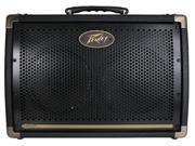Peavey E208 30Watt Ecoustic Acoustic Guitar Amp
