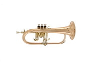 Vento 500 Series Model 5309 Bb Flugelhorn