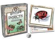 Professor Noggin's: Insects and Spiders