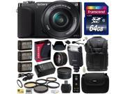 Sony NEX3 NEX-3 NEX3NL NEX-3NL/B Compact Mirrorless Interchangeable Lens Digital Camera with 16-50mm f/3.5-5.6 Lens (Black) with Advanced Accessories Bundle Kit
