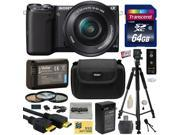 Sony NEX5 NEX-5 NEX-5T NEX5TL NEX-5TL/B Mirrorless Compact Interchangeable Lens Digital Camera with 16-50mm Power Zoom Lens (Black) with Amateur Accessories Bun