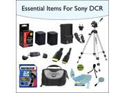 16GB Essentials Items Accessories Kit Including 2x Opteka NP-FV70 High Capacity Extended Battery, 48