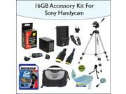 16GB Essentials Items Accessories Kit Including Opteka NP-FV70 High Capacity Extended Battery, 48