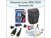 16GB Accessory Package for Panasonic DMC-ZS10 Including 16GB SDHC High Speed Memory Card, Vanguard Sydney-6B Compact Digital Camera Bag, Mini HDMI Cable and Mor