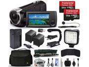 Sony HDR-CX440 Full HD Handycam Camcorder Video Camera + 128GB Memory + Charger with Car/Euro Adapter + Action Stabilizer + LED Night Light + Large Case + Monopod + Dust Cleaning Kit + More