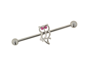 Stainless Steel Industrial Barbell with Owl: 14g
