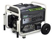Pulsar 10,000 Peak Watt Portable Utility Dual-Fuel Generator with 420 CC. 15.0 HP OHV Engine PG10000B