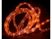 30' Orange LED Indoor/Outdoor Christmas Linear Tape Lighting