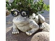 "9.75"" Silly Spectacles Frog Spring Outdoor Patio Garden Planter"