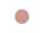 Plum Multi Task Minerals (Eyes, Lips, Cheeks, Nails, Brows) - Terra Firma Cosmetics - 10 g - Powder