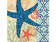"""Starfish Needlepoint Kit-14""""""""X14"""""""" Stitched In Wool & Thread"""" 9SIA00Y6C55732"""