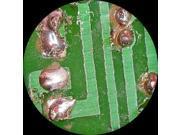 3.35X-90X Trinocular Boom Stereo Microscope w/ Focusable Eyepieces
