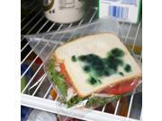 Moldy Sandwich Bags