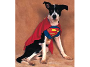 Superdog Pet Costume Medium
