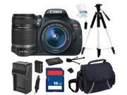 Canon EOS Rebel T5i DSLR Camera with EF-S 18-55mm f/3.5-5.6 IS STM Lens & Canon EF-S 55-250mm f/4-5.6 IS II Lens for Digital SLR Cameras, Beginner's Bundle Kit,