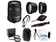 Sigma 18-250mm f3.5-6.3 DC MACRO OS HSM Pro Bundle Kit For Nikon D5300 DSLR