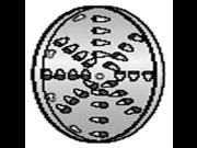Alfa Intl. Shredding Disc hole size 1 4 VS 12SD 1 4