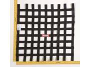 Racequip 726009 Ribbon Window Net