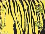 Bohning Blazer Carbon Wrap Yellow Tiger