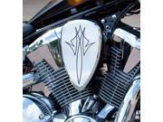 Baron Custom Accessories Big Air Kit Replacement Cover Chrome Pinstripe (BA-2800-13) 9SIA1452T01108