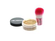 Mica Beauty Kabuki Foundation Kit