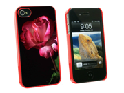 Red and White Rose - Snap On Hard Protective Case for Apple iPhone 4 4S - Red