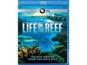 LIFE ON THE REEF 9SIV1976XZ1323