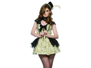 Sexy Steampunk Dress Adult Victorian Halloween Costume